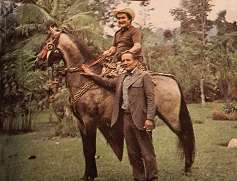 gacha_caballo_interna