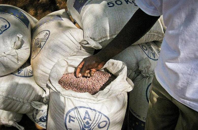 Los gobiernos y sus códigos alimentarios