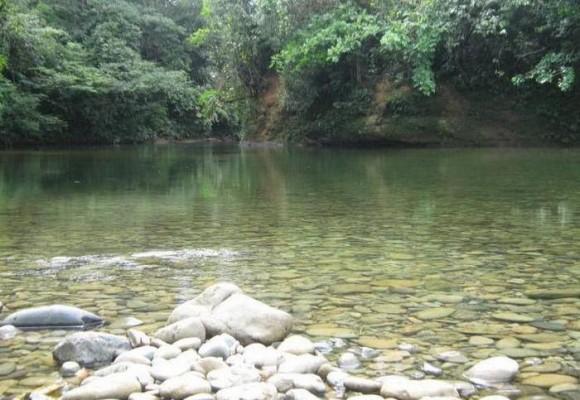 San Cipriano, entre los ríos más puros del mundo