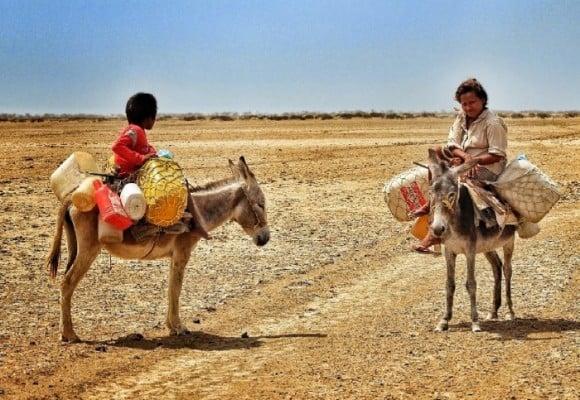 La Guajira, más allá de la minero-dependencia
