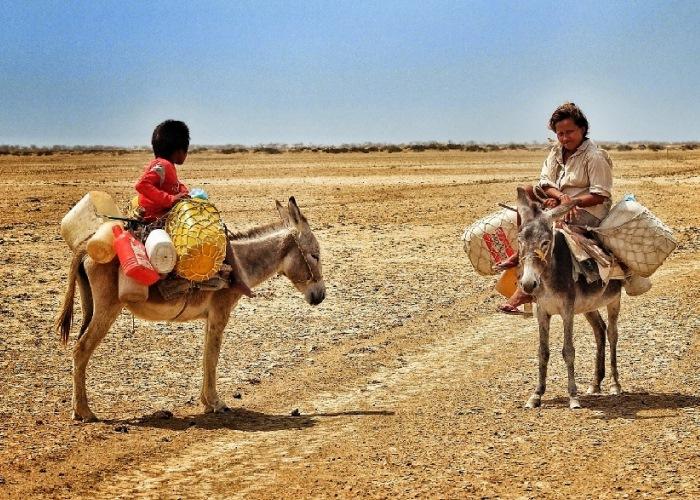 Indeferencia e incompetencia, nuestra hambre y nuestra sed