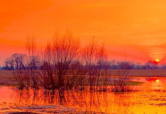 El llano y sus tonos infinitos de sol