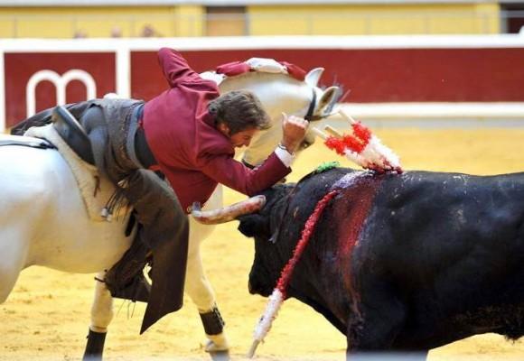 Corridas de toros y tradiciones culturales