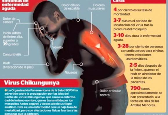 Virus Chikungunya afectaría a millones de colombianos