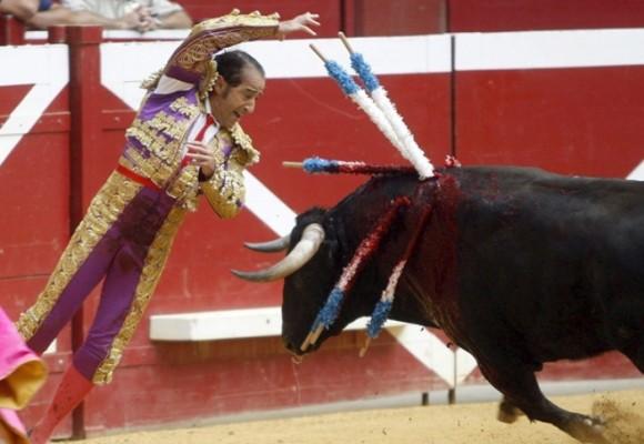 De toros, gallos y mataderos