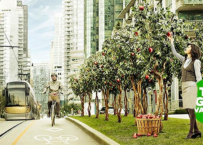Vancouver, la ciudad más verde del planeta en 2020
