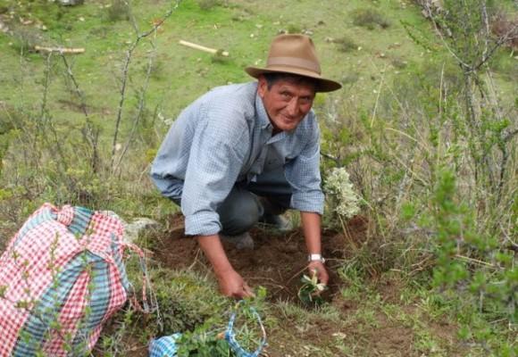 ¿Tierra para los campesinos o para las industrias?