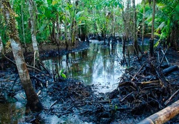 La paz es necesaria para saquear la Amazonía