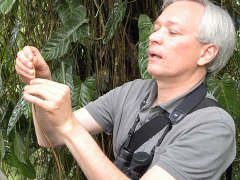 Luis Miguel Renjifo es el director de la Maestría de Conservación y Uso de la Biodiversidad de la Universidad Javeriana.