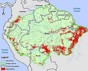La Amazonía está siendo deforestada intensamente en algunas regiones, en Colombia sobre todo en Caquetá y Putumayo. Imagen de http://www.wwf.es/que_hacemos/bosques/problemas/sos_amazonia/