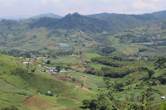 En medio del paisaje rural cafetero se desarrolló el proyecto, lo que muestra que el cuidado de la biodiversidad no solo puede hacerse en selvas inhóspitas y apartadas. Foto de http://aullandopaisaje.blogspot.com/p/viaje-al-barbas-bremen.html