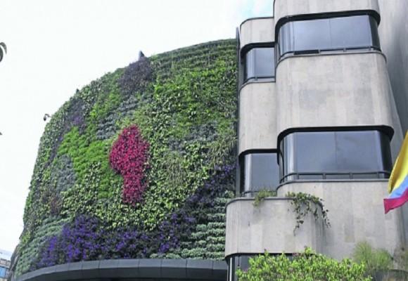 Jardines Verticales para una Bogotá Verde