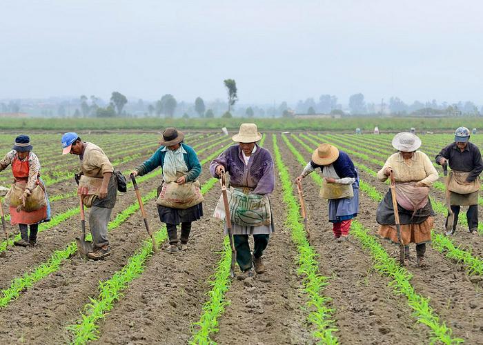 El feudalismo que Colombia nunca superó