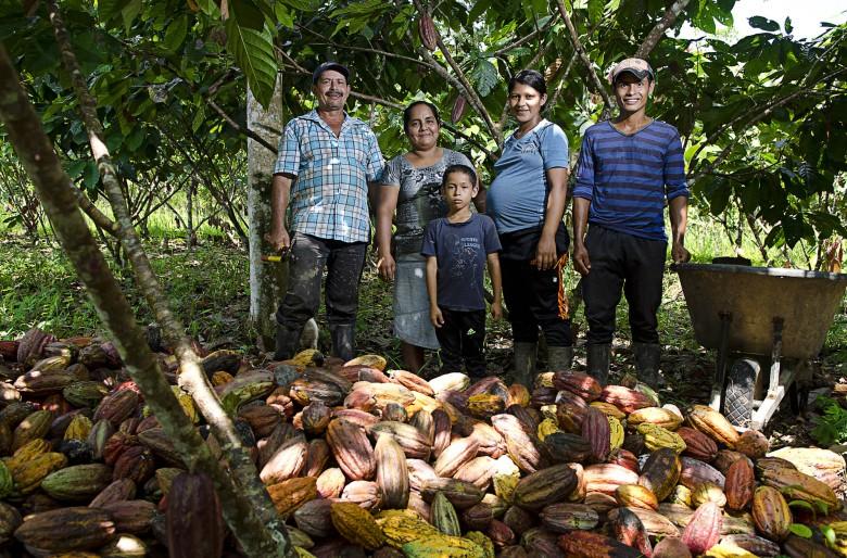 Acabamos con la coca y nos pasamos al cacao orgánico