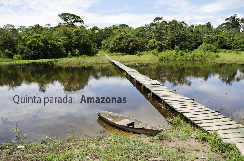 Rumbo al Amazonas