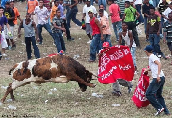 La muerte de un toro es ir en defensa de lo estúpido