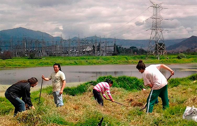 Los jóvenes que defienden un remanso verde en pleno Bogotá