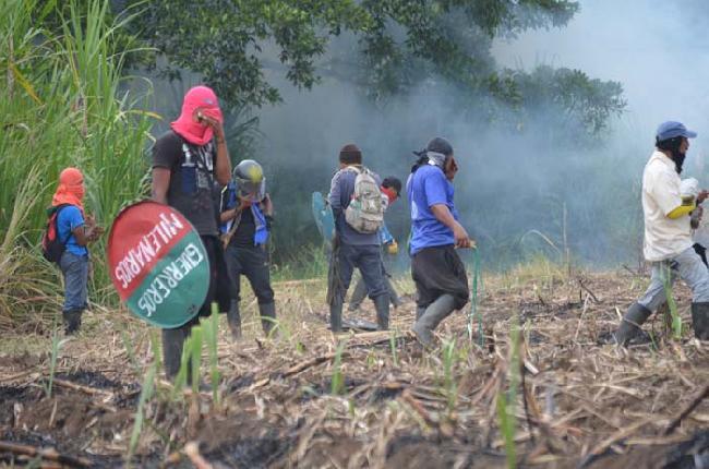 ¿Qué pasa con los indígenas en el Norte del Cauca?