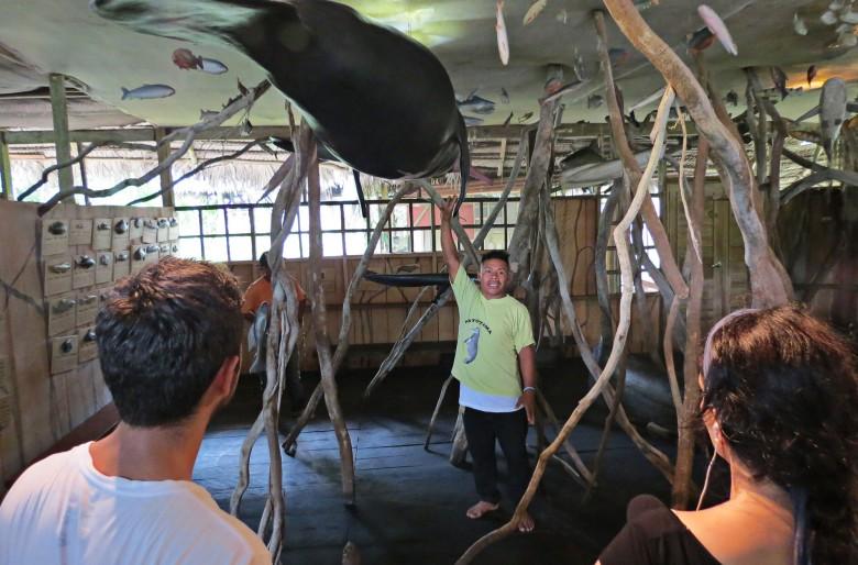 Nade con caimanes negros y manatíes en el fondo del Amazonas