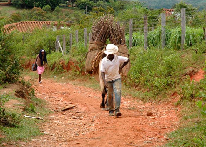 Voces ocultas del conflicto armado en el Cauca