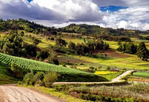 Una apuesta colectiva por la reactivación económica de Boyacá