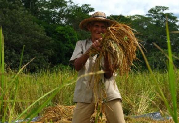 Colombia tiene combustible, pero no cree en el agro