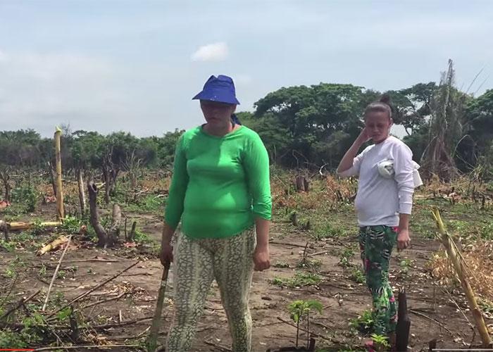 Nuevas agresiones a campesinos de Las Pavas (Bolívar)
