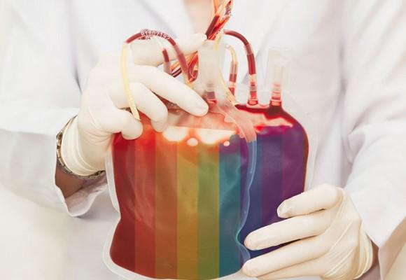 Sangre homosexual ¡a la hoguera!