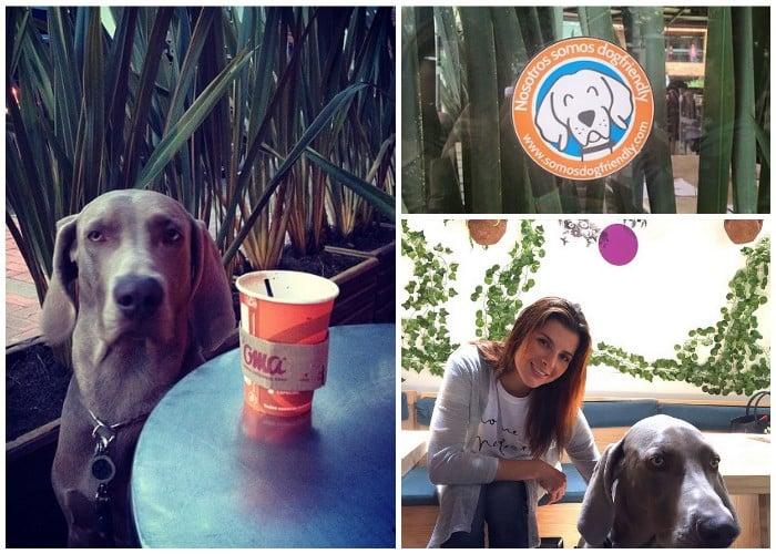 Los 140 sitios 'Dog Friendly' de Bogotá