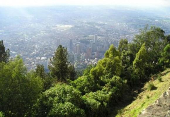 La guía ambiental para las elecciones en Bogotá