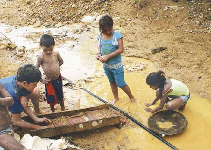 Codechocó y el desarrollo sostenible del Chocó