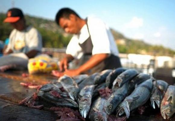 La ley contra la pesca ilegal: un paso que el Congreso debe dar