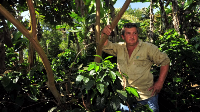 Foto: Cortesía International Center for Tropical Agriculture