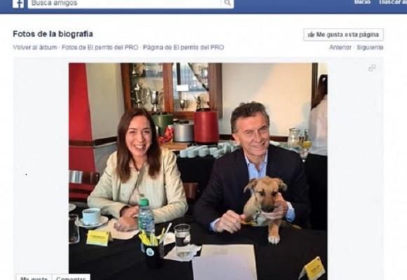 El perro de Mauricio Macri tiene su perfil en Facebook