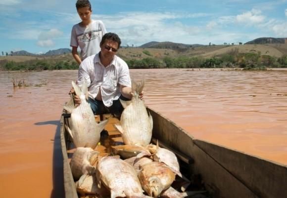 En video, el río Doce en Brasil está muriendo