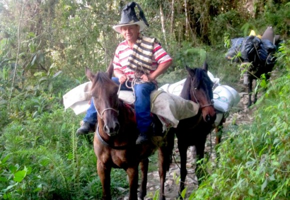 """""""Arriero que no le ayude a la mula, que deje el servicio y se vuelva un cura"""""""