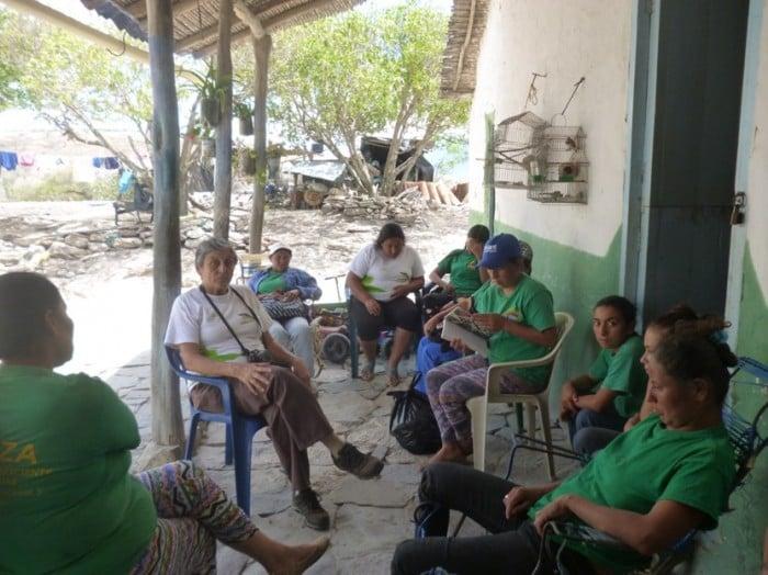 Cortesía guayacanal.org