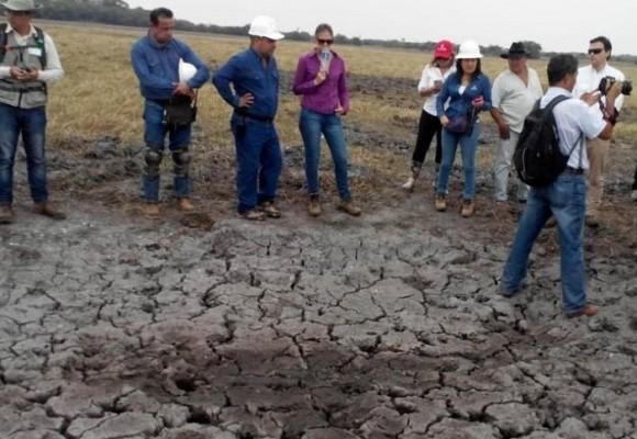 Deterioro Ambiental en Matemarrano (Parte I)