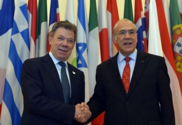 Lograr la paz con trabajo decente y digno ¿Qué dice la OCDE?