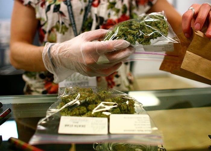 ¿Por qué es importante hablar de marihuana medicinal?
