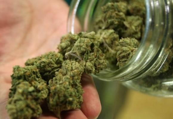 Legalización, la única opción
