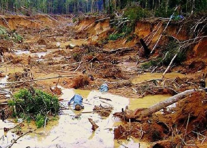 Territorios indígenas del Cauca se están desangrando por culpa de la minería