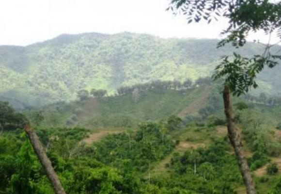 Preguntas y desafíos sobre la 'Paz Territorial' en Colombia