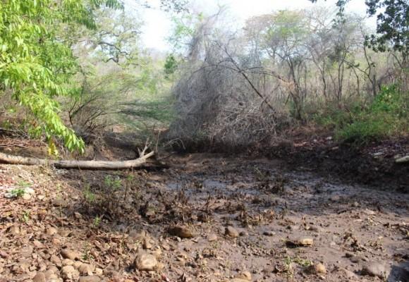 Tribunal de la Guajira escuchó protestas y frenó desvío de arroyo Bruno
