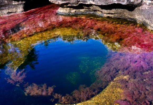 """""""No vamos a permitir daños ambientales en Caño Cristales"""""""