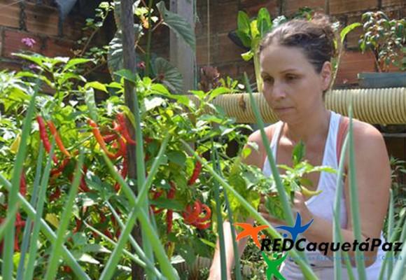 En Caquetá se curan las heridas de guerra sembrando