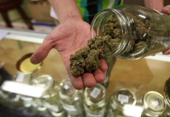 A propósito de la legalización de la marihuana para uso medicinal