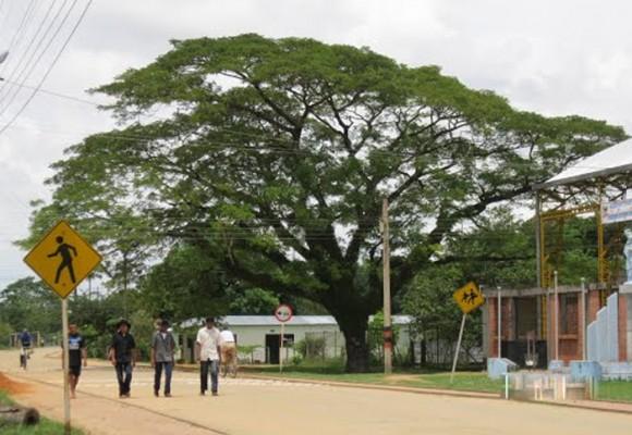 Mineducación incumplió proceso de evaluación en Arauca