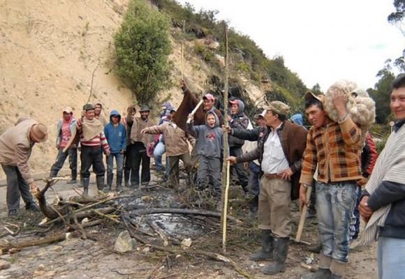Paro Agrario: el mecanismo de defensa del campesinado colombiano