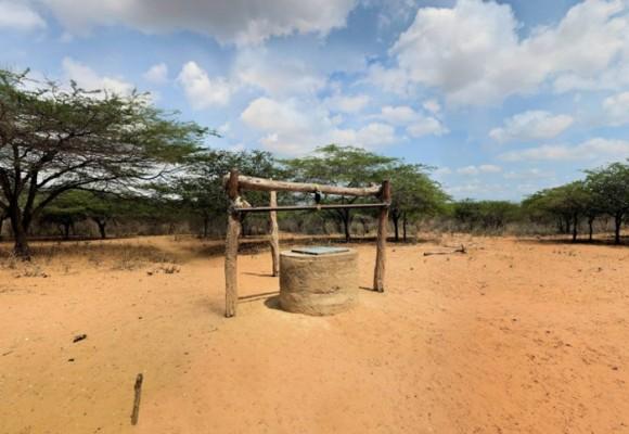 Sistemático ecocidio a la Guajira